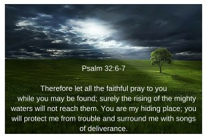 Psalm 32-6-8New International Version (NIV)6