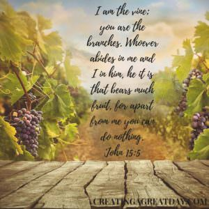 I am the vine; you are the branches. Whoever abides in me and I in him, he it is that bears much fruit, for apart from me you can do nothing. John 15-5
