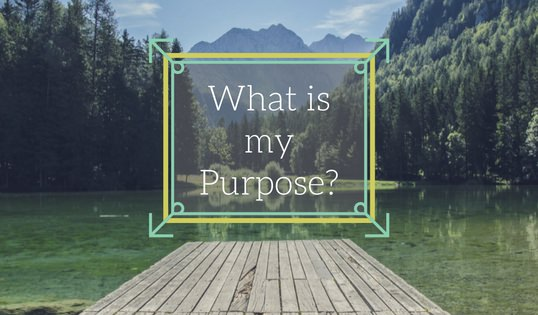 What Is My Purpose?: A Question Everyone Asks