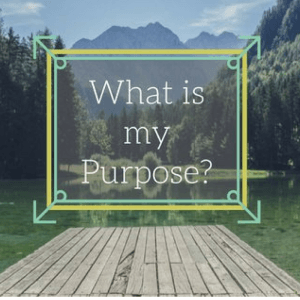 What is my purpose- Social