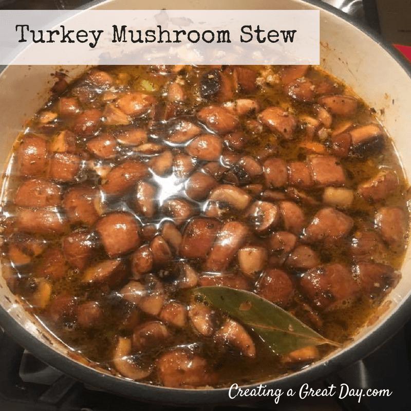 turkey-mushroom-stew-2