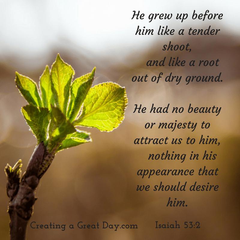 Isaiah 53:2