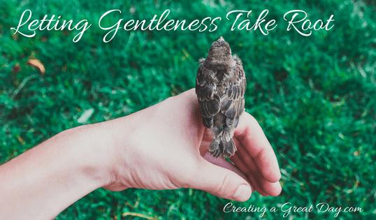 Teaching Kids Gentleness