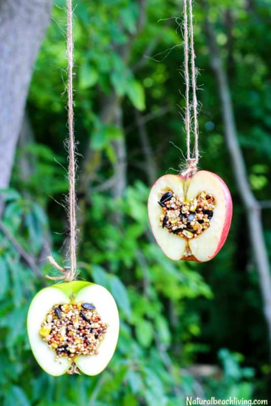 apple-birdseed-homemade-bird-feeders-pin-5t-683x1024