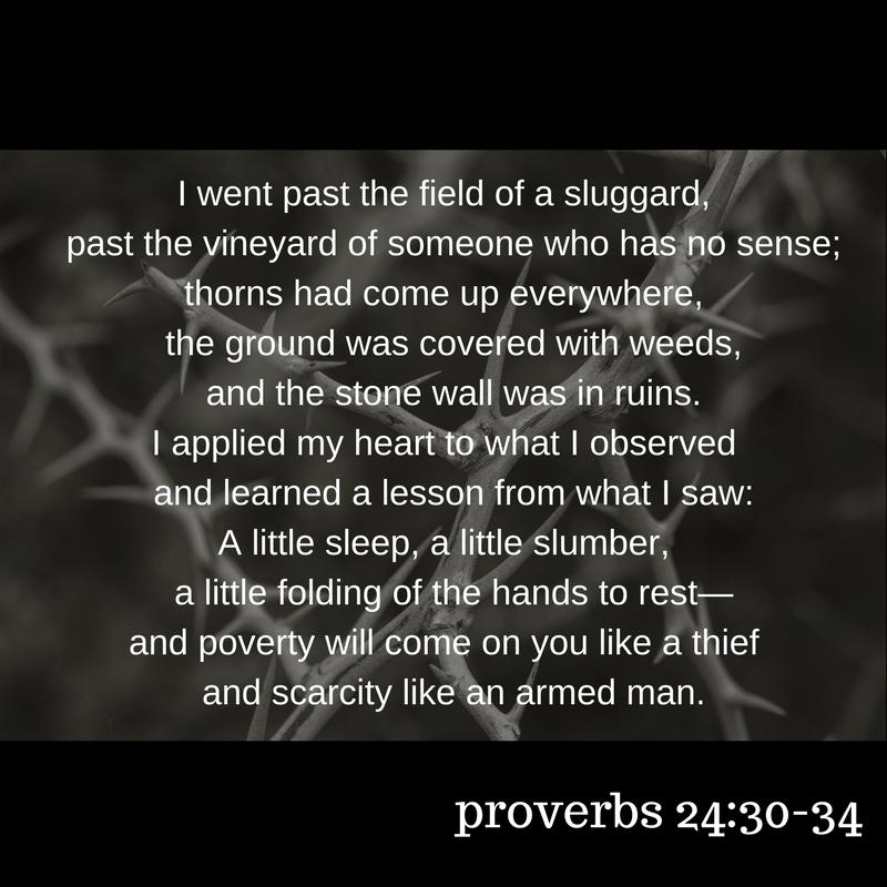 proverbsocialmed